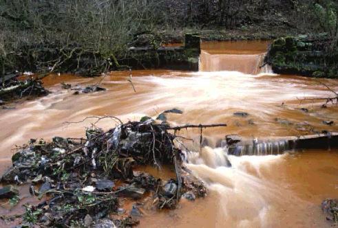Afrique du Sud : la montée des eaux polluées inquiète